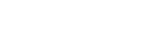 Logo soluzione bianco